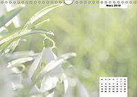 Naturmotive - Bastelkalender (Wandkalender 2019 DIN A4 quer) - Produktdetailbild 3