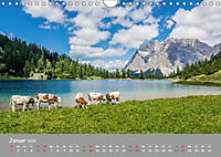 Naturparadies Zugspitzarena (Wandkalender 2019 DIN A4 quer) - Produktdetailbild 1