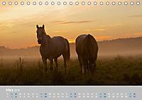 Naturpark am Stettiner Haff (Tischkalender 2019 DIN A5 quer) - Produktdetailbild 3