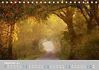 Naturpark am Stettiner Haff (Tischkalender 2019 DIN A5 quer) - Produktdetailbild 9
