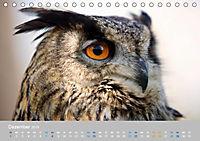 Naturpark am Stettiner Haff (Tischkalender 2019 DIN A5 quer) - Produktdetailbild 12