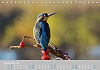 Naturpark am Stettiner Haff (Tischkalender 2019 DIN A5 quer) - Produktdetailbild 11