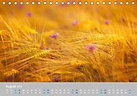 Naturpark am Stettiner Haff (Tischkalender 2019 DIN A5 quer) - Produktdetailbild 8