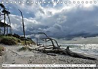 Naturschauspiel Darsser Weststrand (Tischkalender 2019 DIN A5 quer) - Produktdetailbild 3