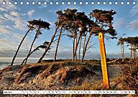 Naturschauspiel Darsser Weststrand (Tischkalender 2019 DIN A5 quer) - Produktdetailbild 7
