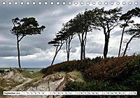 Naturschauspiel Darsser Weststrand (Tischkalender 2019 DIN A5 quer) - Produktdetailbild 9