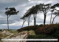Naturschauspiel Darsser Weststrand (Wandkalender 2019 DIN A3 quer) - Produktdetailbild 9