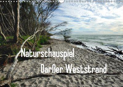 Naturschauspiel Darsser Weststrand (Wandkalender 2019 DIN A3 quer), Friedrich Pries