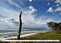 Naturschauspiel Darsser Weststrand (Wandkalender 2019 DIN A3 quer) - Produktdetailbild 5