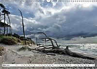 Naturschauspiel Darsser Weststrand (Wandkalender 2019 DIN A3 quer) - Produktdetailbild 3