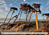 Naturschauspiel Darsser Weststrand (Wandkalender 2019 DIN A3 quer) - Produktdetailbild 7