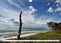 Naturschauspiel Darßer Weststrand (Wandkalender 2019 DIN A4 quer) - Produktdetailbild 5