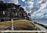 Naturschauspiel Darßer Weststrand (Wandkalender 2019 DIN A4 quer) - Produktdetailbild 2