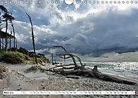 Naturschauspiel Darßer Weststrand (Wandkalender 2019 DIN A4 quer) - Produktdetailbild 3