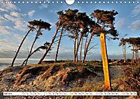 Naturschauspiel Darßer Weststrand (Wandkalender 2019 DIN A4 quer) - Produktdetailbild 7