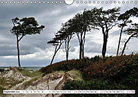 Naturschauspiel Darßer Weststrand (Wandkalender 2019 DIN A4 quer) - Produktdetailbild 9