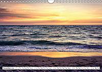 Naturschauspiel Darßer Weststrand (Wandkalender 2019 DIN A4 quer) - Produktdetailbild 12