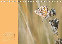 Naturschönheiten im Detail (Tischkalender 2019 DIN A5 quer) - Produktdetailbild 1