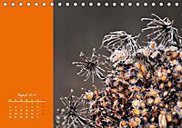 Naturschönheiten im Detail (Tischkalender 2019 DIN A5 quer) - Produktdetailbild 8