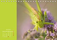 Naturschönheiten im Detail (Tischkalender 2019 DIN A5 quer) - Produktdetailbild 5