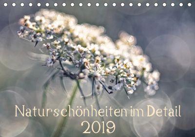 Naturschönheiten im Detail (Tischkalender 2019 DIN A5 quer), Kirsten Karius