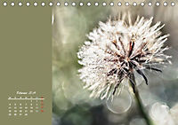 Naturschönheiten im Detail (Tischkalender 2019 DIN A5 quer) - Produktdetailbild 2