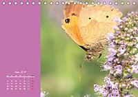 Naturschönheiten im Detail (Tischkalender 2019 DIN A5 quer) - Produktdetailbild 3