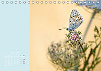 Naturschönheiten im Detail (Tischkalender 2019 DIN A5 quer) - Produktdetailbild 7