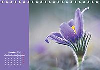 Naturschönheiten im Detail (Tischkalender 2019 DIN A5 quer) - Produktdetailbild 11