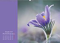 Naturschönheiten im Detail (Wandkalender 2019 DIN A2 quer) - Produktdetailbild 11