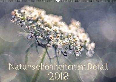 Naturschönheiten im Detail (Wandkalender 2019 DIN A2 quer), Kirsten Karius