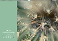 Naturschönheiten im Detail (Wandkalender 2019 DIN A2 quer) - Produktdetailbild 6