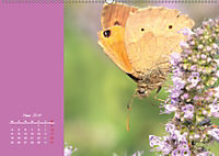 Naturschönheiten im Detail (Wandkalender 2019 DIN A2 quer) - Produktdetailbild 3