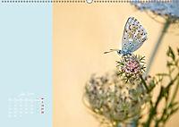 Naturschönheiten im Detail (Wandkalender 2019 DIN A2 quer) - Produktdetailbild 7