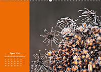 Naturschönheiten im Detail (Wandkalender 2019 DIN A2 quer) - Produktdetailbild 8