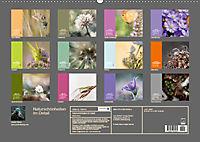 Naturschönheiten im Detail (Wandkalender 2019 DIN A2 quer) - Produktdetailbild 13