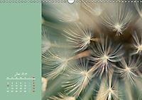 Naturschönheiten im Detail (Wandkalender 2019 DIN A3 quer) - Produktdetailbild 6