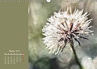 Naturschönheiten im Detail (Wandkalender 2019 DIN A3 quer) - Produktdetailbild 2
