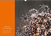 Naturschönheiten im Detail (Wandkalender 2019 DIN A3 quer) - Produktdetailbild 8