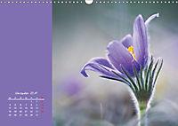 Naturschönheiten im Detail (Wandkalender 2019 DIN A3 quer) - Produktdetailbild 11