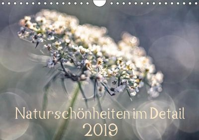 Naturschönheiten im Detail (Wandkalender 2019 DIN A4 quer), Kirsten Karius
