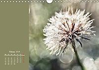 Naturschönheiten im Detail (Wandkalender 2019 DIN A4 quer) - Produktdetailbild 2
