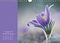 Naturschönheiten im Detail (Wandkalender 2019 DIN A4 quer) - Produktdetailbild 11