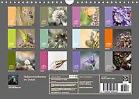 Naturschönheiten im Detail (Wandkalender 2019 DIN A4 quer) - Produktdetailbild 13