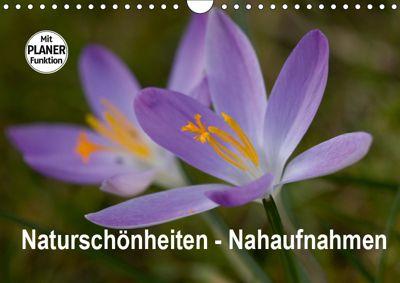 Naturschönheiten Nahaufnahmen (Wandkalender 2019 DIN A4 quer), Rosemarie Prediger