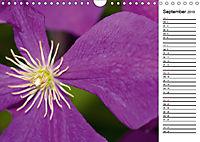 Naturschönheiten Nahaufnahmen (Wandkalender 2019 DIN A4 quer) - Produktdetailbild 9
