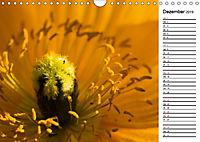 Naturschönheiten Nahaufnahmen (Wandkalender 2019 DIN A4 quer) - Produktdetailbild 12