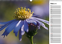 Naturschönheiten Nahaufnahmen (Wandkalender 2019 DIN A3 quer) - Produktdetailbild 3