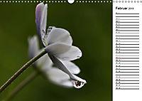 Naturschönheiten Nahaufnahmen (Wandkalender 2019 DIN A3 quer) - Produktdetailbild 2