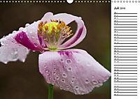 Naturschönheiten Nahaufnahmen (Wandkalender 2019 DIN A3 quer) - Produktdetailbild 7